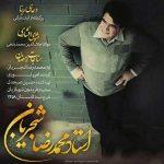 متن آهنگ محمدرضا شجریان مثنوی افشاری
