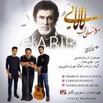 متن آهنگ مهران خلیلی پور لالایی حبیب